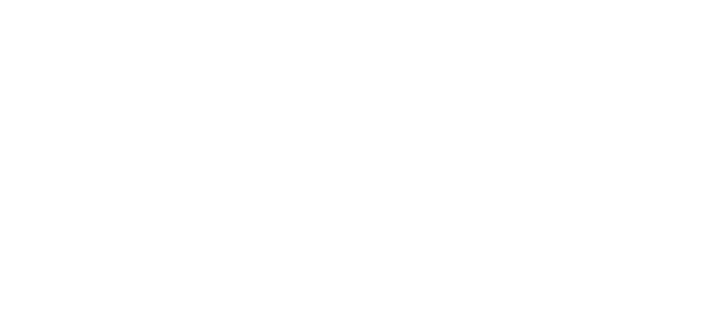WirelessNeed Logo